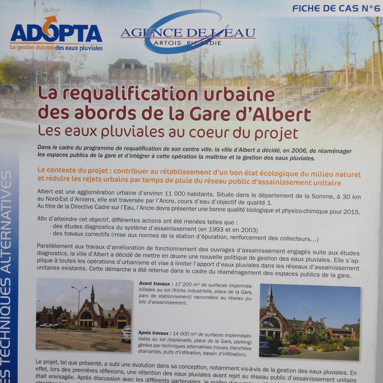FC6_ADOPTA