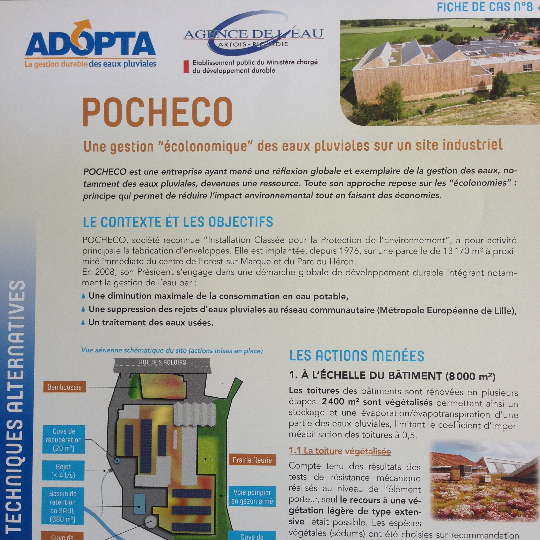 FC8_ADOPTA