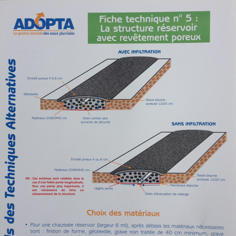 FT5_ADOPTA