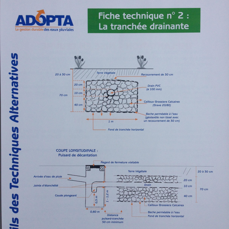 FT2_ADOPTA