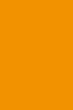 fond-orange-1